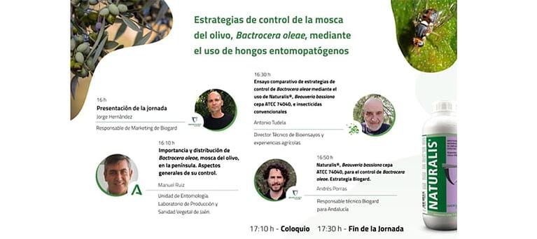 Biogard - Cómo controlar la mosca del olivo, Bactrocera oleae, mediante el uso de hongos entomopatógenos