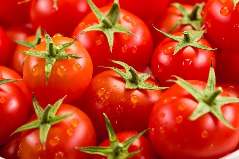 Biogard - Tomate